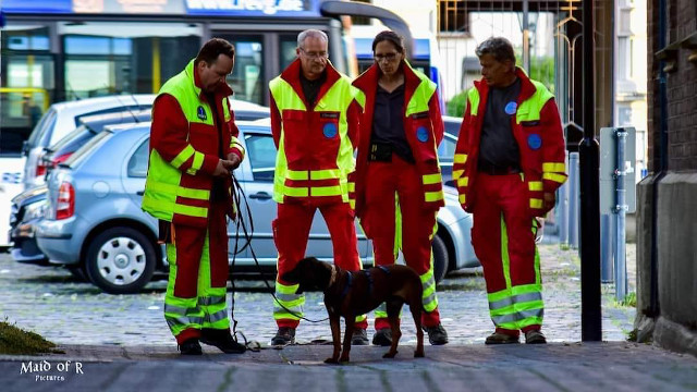 Mantrailer-news-besuchshunde